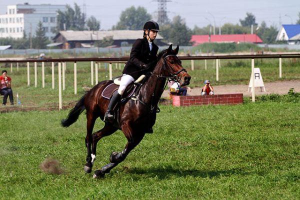 Этот вид конного спорта более зрелищный. Ведь коню и наезднику нужно преодолеть не одно препятствие. И главное не сбить их и уложиться в определённое время.