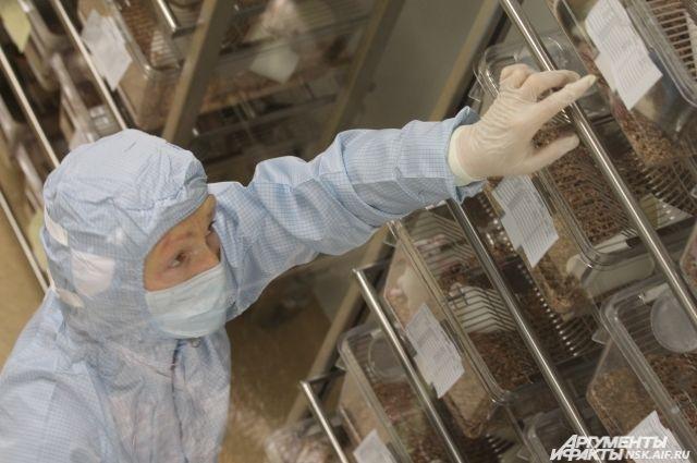 Учёные считают, что потепление может разбудить древние вирусы и бактерии