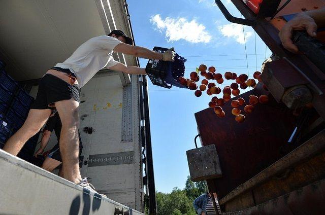 ВКрасноярске уничтожили неменее  100 килограммов польских яблок