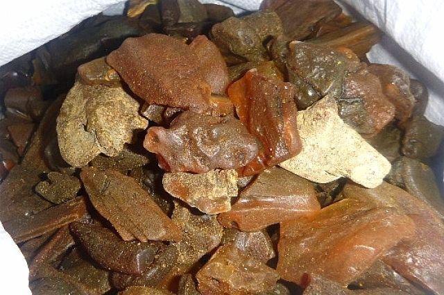 2,5 кг янтаря нашли сотрудники ГИБДД у водителя «Ауди» в Зеленоградске.