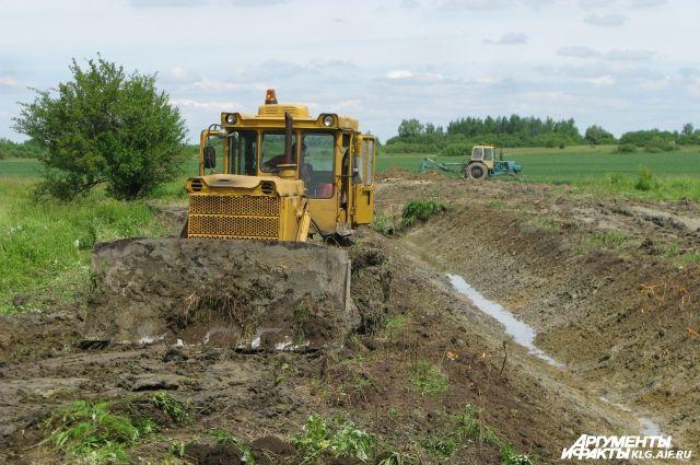 Калининградские фермеры опасаются больших потерь урожая из-за обильных дождей.