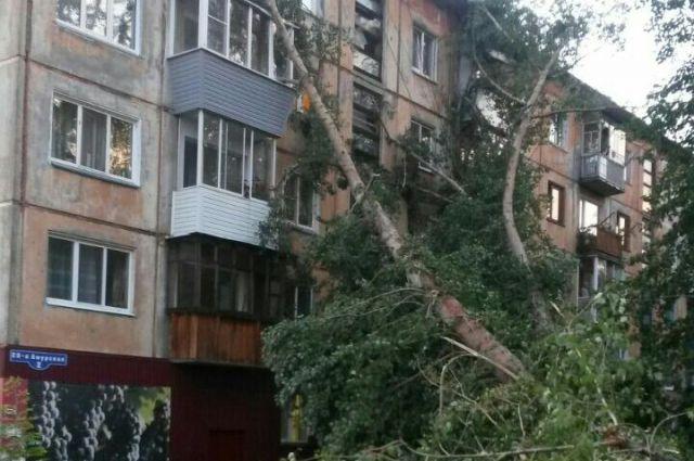Последствия урагана в Омске устраняли больше месяца.