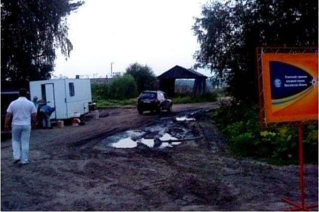 ВЯрославской области довелось уничтожить три десятка овец икоз