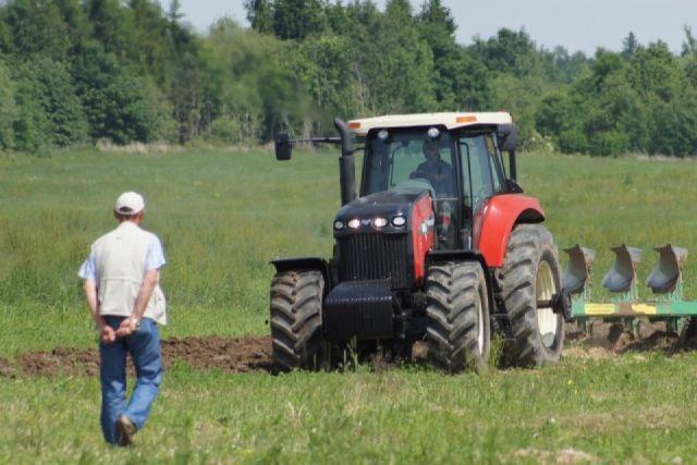 Урожай зерновых 2016 года оказался под угрозой.