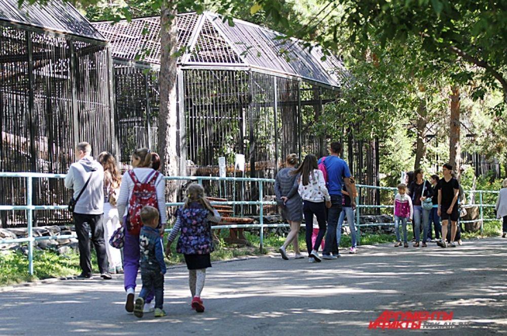 Утром в зоопарке не много гуляющих, но вот желающих посмотреть на новые павильоны пока много.