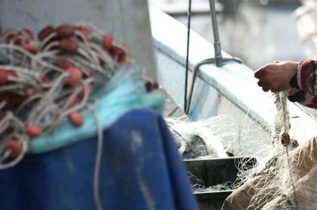 Квота на промышленный вылов байкальского омуля снижается год от года.