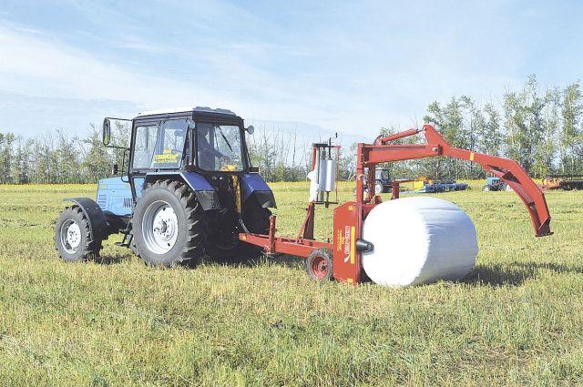 Погода в сентябре обеспечит продуктивный сбор урожая.