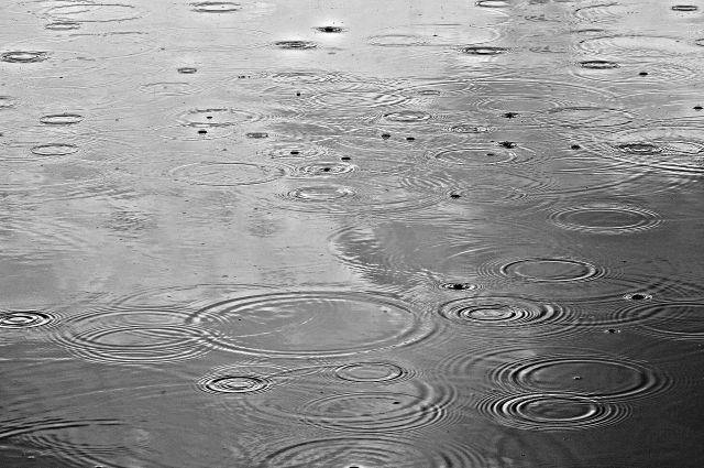 В выходные возможны дожди и ливни.