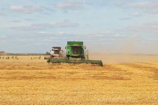 Аграрии Самарской области поставили рекорд посбору зерновых культур