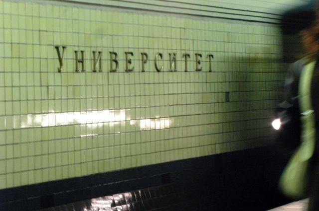 Машинист московского метро спас забравшегося нарельсы котенка