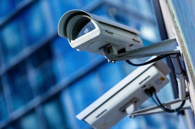 В 8-ми парках искверах Воронежа установят камеры