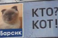 Кот оказал материальную помощь
