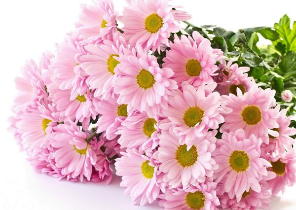 Классика тоже не выходит из моды, но хорошо если цветы будут однотонными