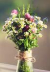 Полевые цветы любят учителя помоложе