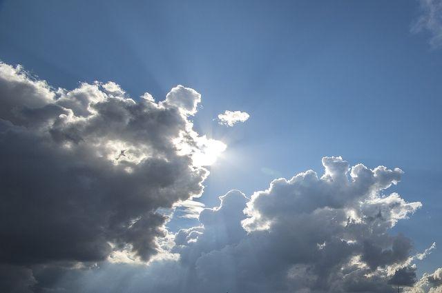 Первого сентября вОмске будет солнечно
