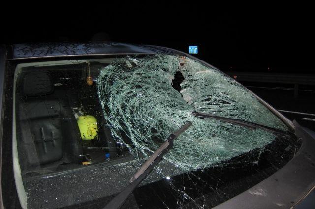 НаСтаврополье женщина-водитель насмерть сбила 58-летнюю женщину