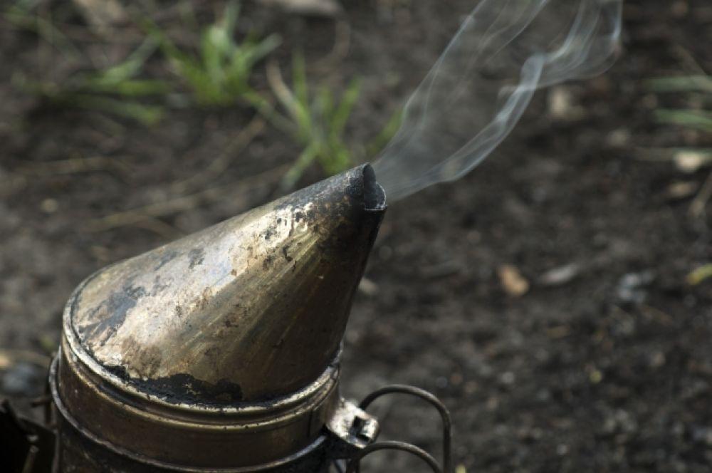Без дымаря забрать мёд у пчёл не получится - закусают!