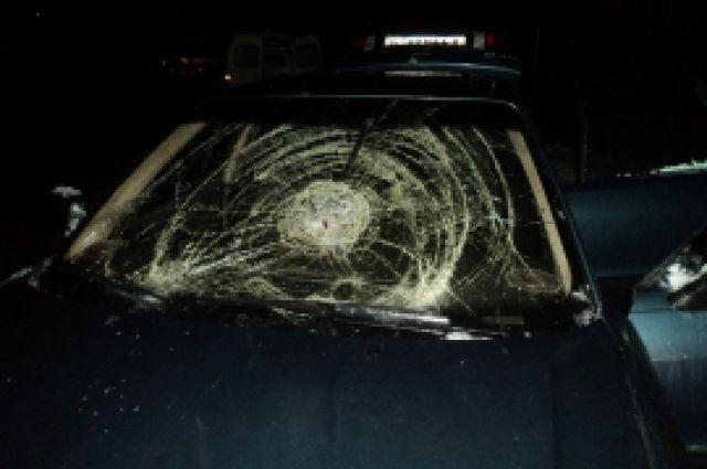 Девушка в аварии не пострадала.