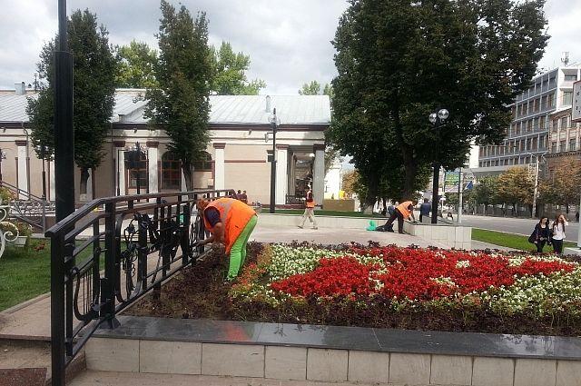 Около драмтеатра установили цветочную карету