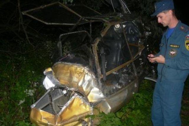 ВТульской области разбилось самодельное воздушное судно