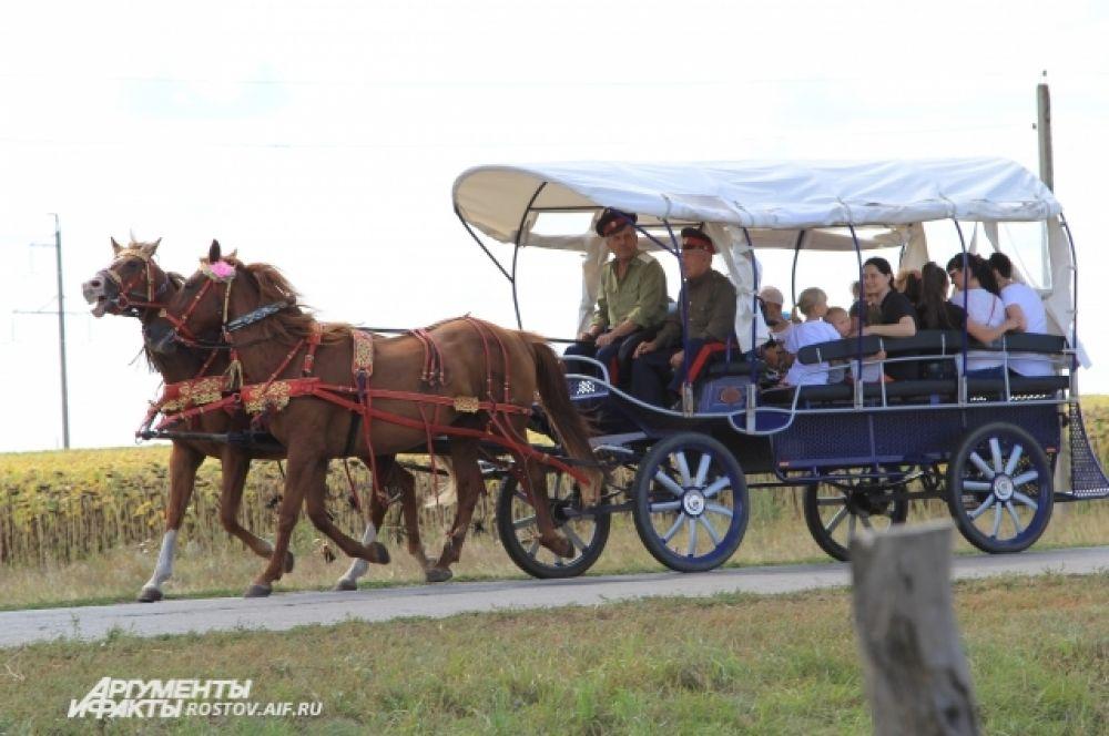 Запряженная двойка лошадей работала без устали, катая детей.