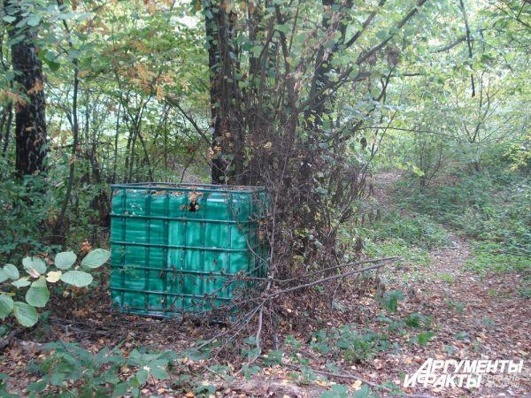 Справа от куба пролегает тропинка, по которой пришли грибники.