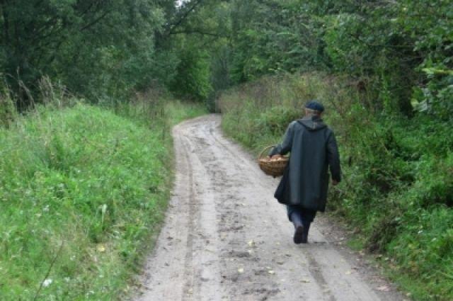Милиция Нягани отыскала ивынесла излеса деда, перенесшего инсульт