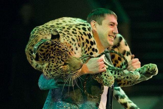 Цирковая программа уже поразила зрителей на Сахалине.