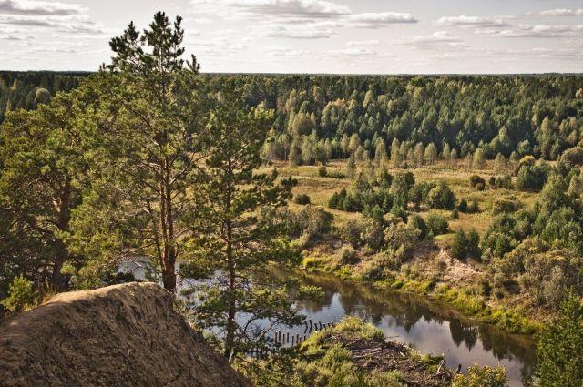 Люди ушли в лес орешничать и потерялись.