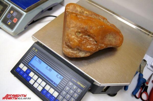 Вес самого большого янтарного самородка составляет 1,8 килограмм.
