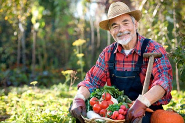 Фермерам увеличили помощь до 500 тысяч грн