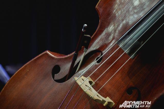 Губернаторский симфонический ансамбль приглашает брянцев наоткрытие нового сезона
