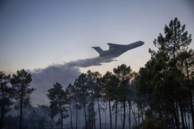 Самолёты МЧСРФ спасли отогня португальский Моншик