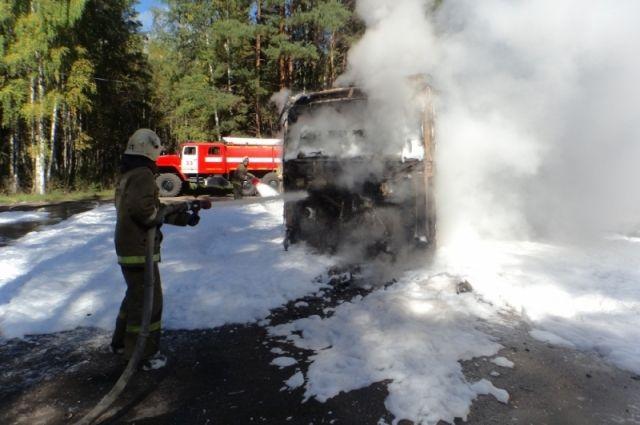 Пожары возникают из-за гроз и по вине местных жителей.