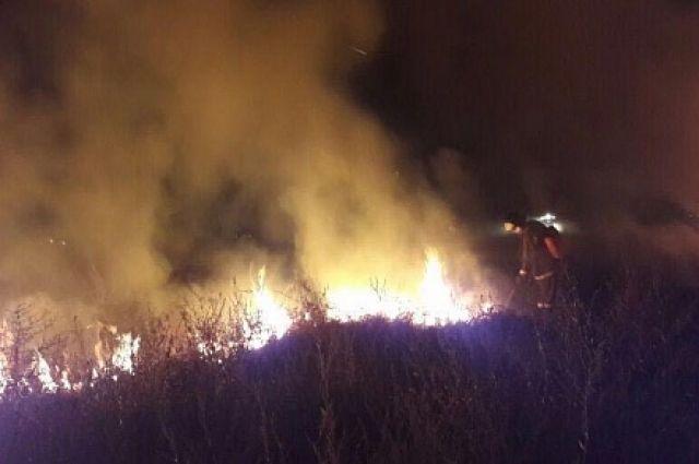 Пожар вКумженской роще Ростова тушили около 5-ти часов