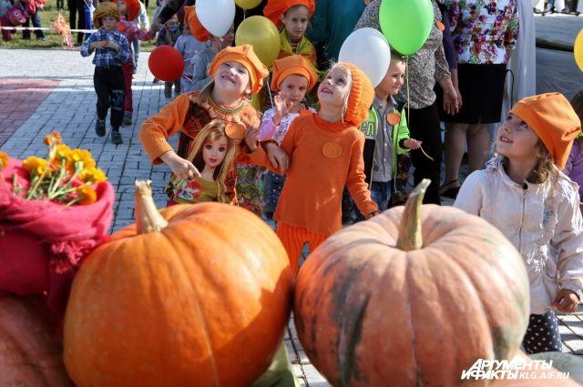 Традиционный праздник тыкв пройдет в поселке под Калининградом.
