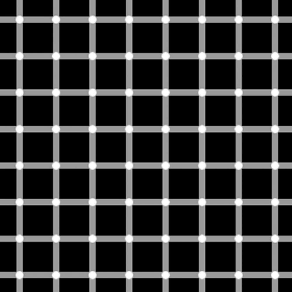 Оригинальное изображение «мерцающей сетки»: при перемещении взгляда по изображению белые области «превращаются» в черные.