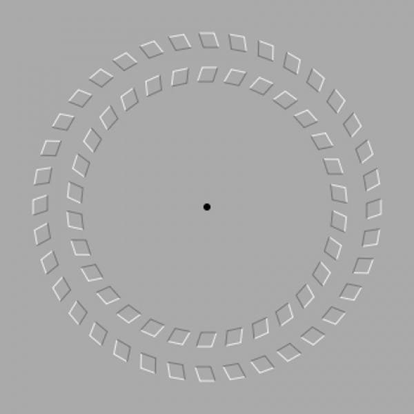Иллюзия движения: следует смотреть на черную точку в центре и двигать головой вперед-назад, круги вокруг точки начнут двигаться.