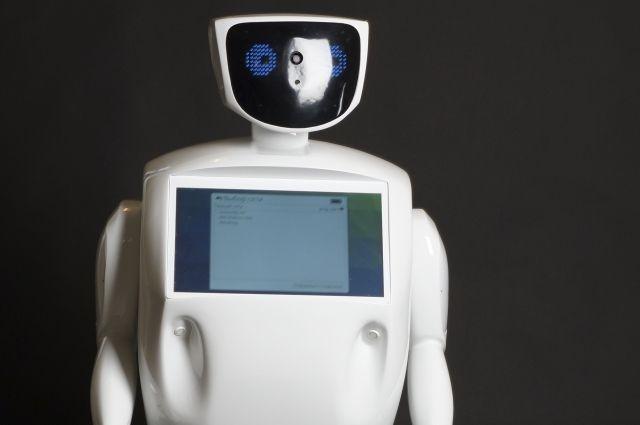 Полицейские задержали робота запредвыборную агитацию в столице России