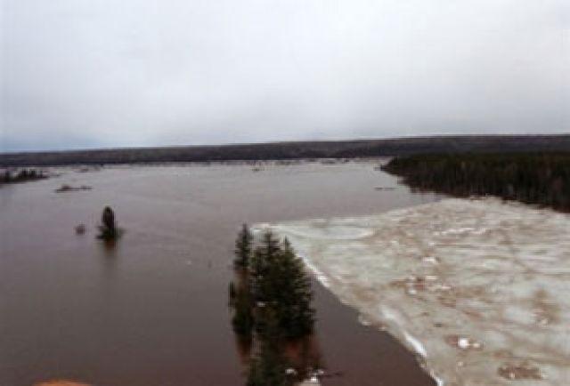 Повышенное содержание металлов - особенность всех северных рек.