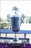 Сейчас в Ростове-на-Дону, Аксайском, Азовском, Неклиновском районах, Батайске и Таганроге действуют 20 конных клубов.