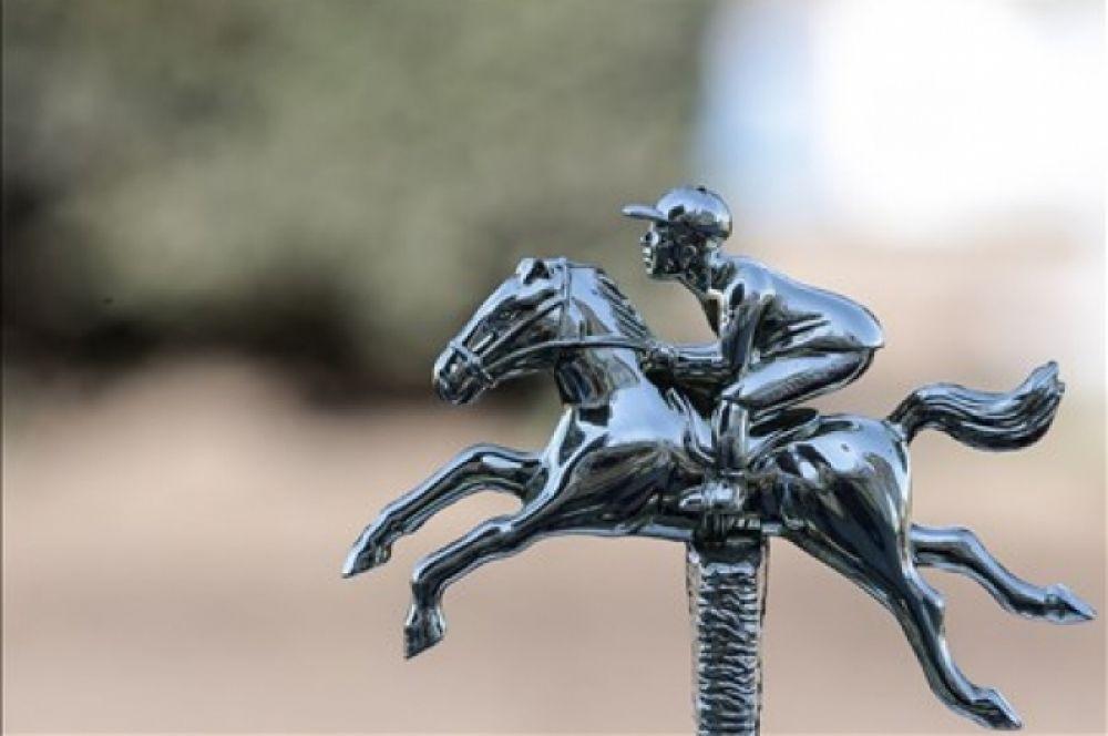 В нынешнем сезоне на дорожках Ростовского ипподрома прошли испытания более 500 лошадей. Кроме лошадей, выращенных в Ростовской области, в борьбе на скаковой дорожке соревновались питомцы конезаводов Волгоградской и Пензенской областей, Краснодарского и Ставропольского краев, республик Адыгея, Калмыкия, Карачаево-Черкессия, Кабардино-Балкария.