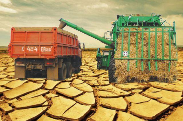 Вред отзасухи вУдмуртии составил около 826 млн руб. — МЧС