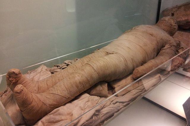 Взаброшке наМосковском отыскали заплесневелую мумию