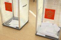 53,35% жителей области пришли на выборы.