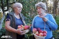 Нина Небосько (справа) жалеет, что часть урожая приходится выкидывать.
