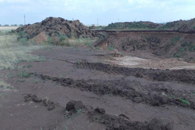 ВВолгограде предприниматель подозревается вуничтожении земель лесфонда