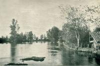 Река Ботьма в период разлива.