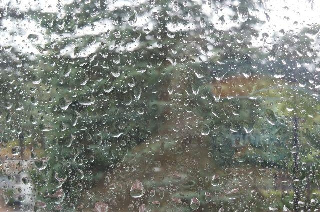 Дождь имокрый снег прогнозируют синоптики