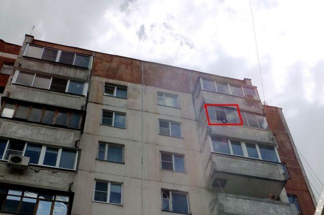 Петербург: умер девятнадцатилетний ученик, выпав изокна дома напроспекте Просвещения